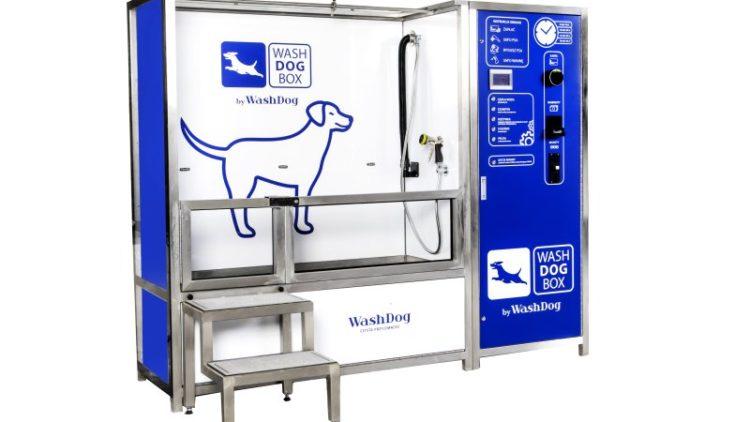 Co to jest samoobsługowa myjnia dla psa?