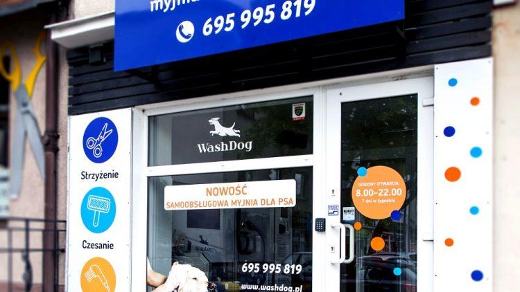 Samoobsługowa myjnia dla psów w salonie groomerskim