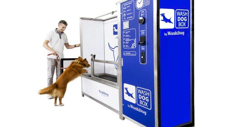 Jak najprościej, najszybciej i najtaniej otworzyć samoobsługową myjnię dla psów?