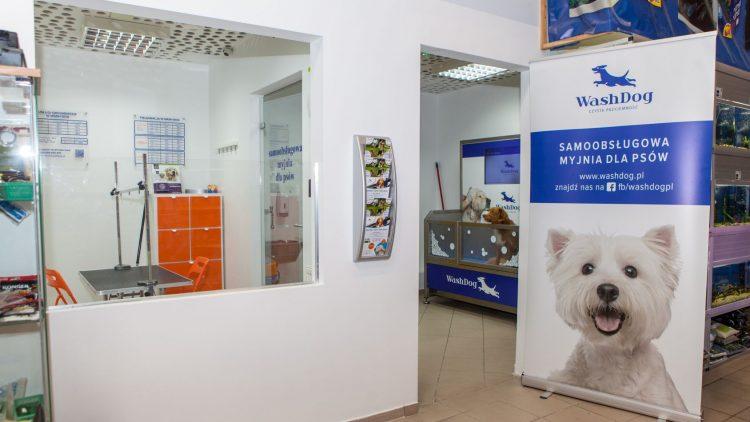 Samoobsługowa myjnia dla psów w sklepie zoologicznym